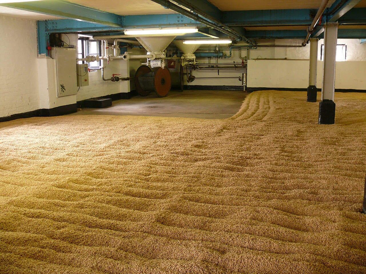 floor-malting