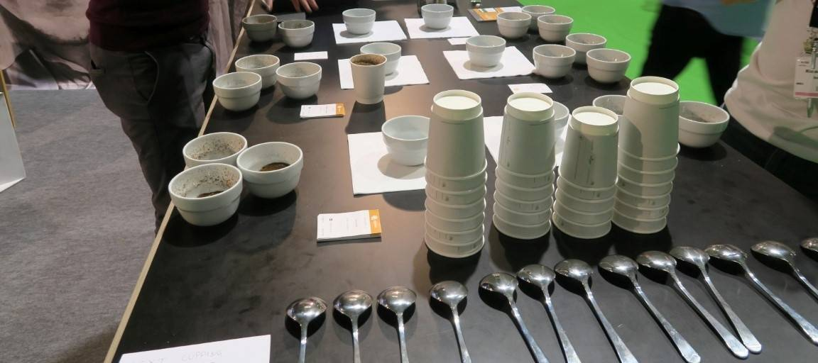 World of Coffee - Cupping alkamassa