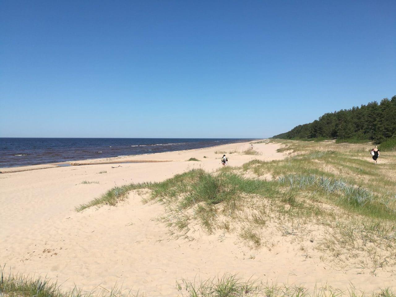 Jokamies-Teslalla-Puolaan-Vitrupe-ranta-Latvia