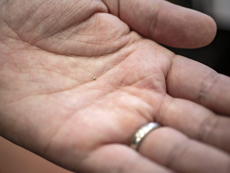 Ruuvi kämmenellä selittää hyvin sen, miksi laadukas luuppi ja pinsetit ovat ensiarvoisen tärkeät.
