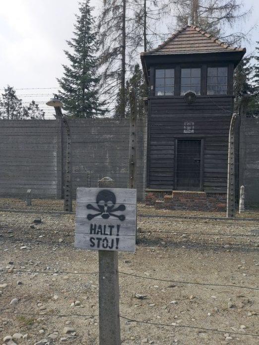 Jokamies-Itäblokki-Teslalla-Auschwitz-Torn
