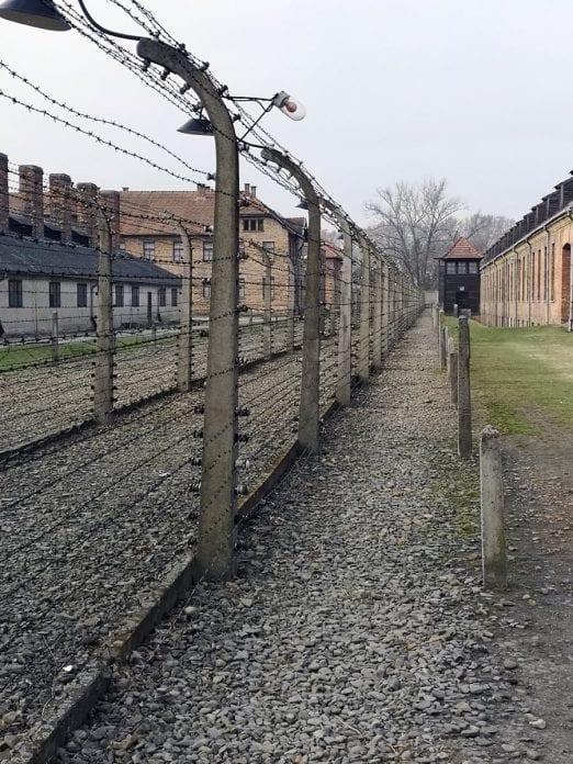 Jokamies-Itäblokki-Teslalla-Auschwitz-aita